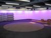 Gt_library_purple